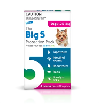 The Big 5 Protection for Dogs